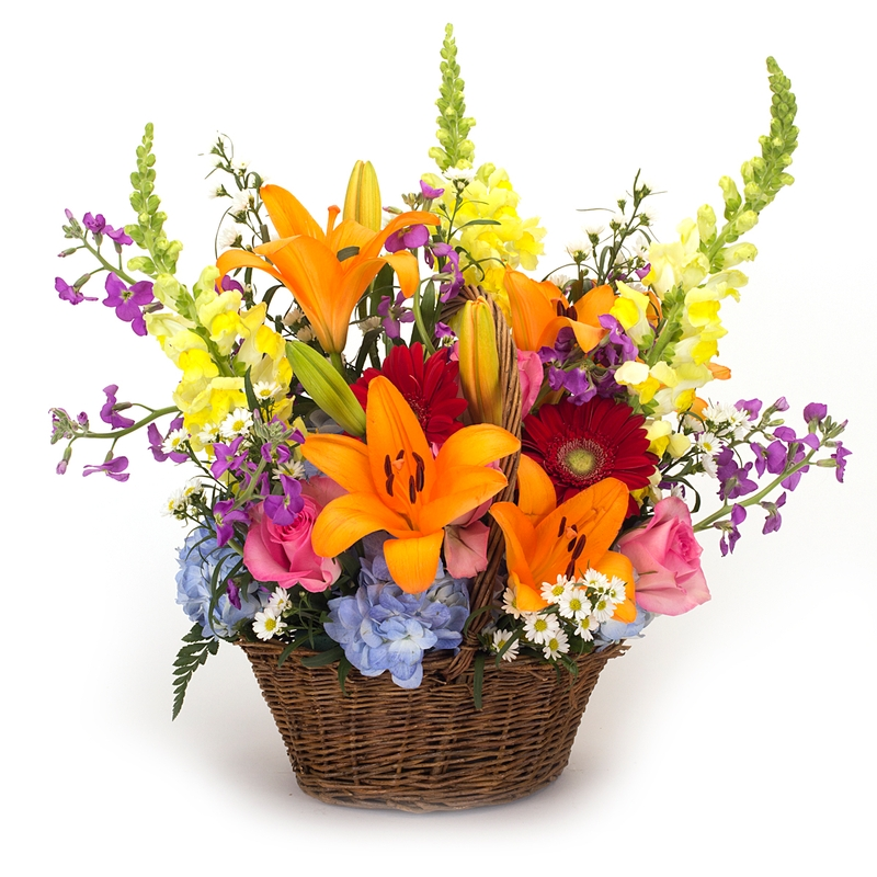 Blooming Basket - Item # 44701 - Dave's Gift Baskets